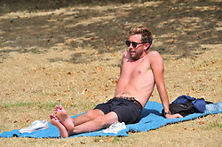 &copy; Licensed to London News Pictures. 07/08/2018<br /> GREENWICH, UK.<br /> People enjoying the hot weather in Greenwich Park, Greenwich.<br /> (permission given)<br /> Photo credit: Grant Falvey/LNP