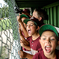 Portsmouth Little League players cheer on their teammates during a game in Portsmouth, NH.