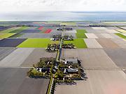 Nederland, Flevoland, Noordoostpolder, 16-04-2012; IJzerpad met bloembollenvelden die op het punt van bloeien staan. Boerderijen en kavels op regelmatige onderlingen afstand, voorbeeld van moderne grootschalige polder met rationele verkaveling. De aanleg van de polder maakte deel uit van de Zuiderzeewerken (plan Lely) en viel in 1942 droog. De meeste boerderijen (en dorpen) zijn van na de tweede wereldoorlog. The northeast polder (NOP), is an example of modern large-scale polder with rational allotment. The construction of the polder was part of the Zuiderzee Works (Lely plan), in 1942 the polder was dry. Most of the building, farmhouses and villages, is post-war.luchtfoto (toeslag), aerial photo (additional fee required).foto/photo Siebe Swart