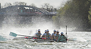 London. UNITED KINGDOM.  CUWBC, blue boat fighting through rough water, during the The 71st Newton Women's Boat Race on the Championship Course, River Thames, Putney/Mortlake.  Sunday  27/03/2016    [Mandatory Credit. Intersport Images]<br /> <br /> Oxford University Women's Boat Club {OUWBC} vs Cambridge University Women's Boat Club {CUWBC} <br /> <br /> <br /> <br /> Cambridge, Crew Bow Ashton Brown, 2 Fiona Macklin, 3 Alice Jackson, 4 Thea Zabell, 5 Daphne Martschenko, 6 Myriam Goudet, 7 Hannah Roberts, Stroke Zara Goozee, Cox Rosemary Ostfeld.