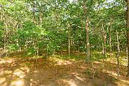 12 Dear Trail, Southampton, NY