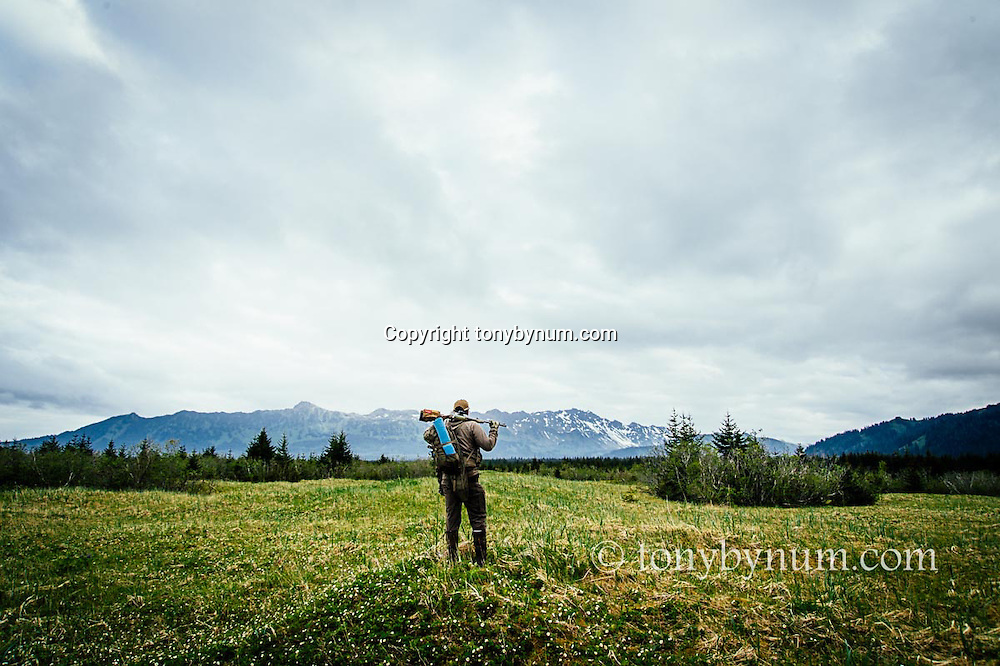 hunting brown bears in alaska