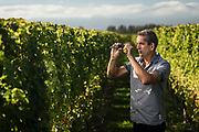 Patrick Materman, Winemaker