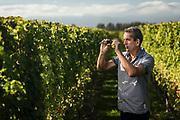 Patrick Materman, Winemaker