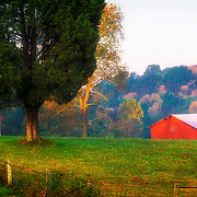 Red barn and tree in warm tone