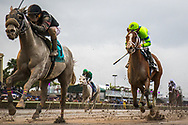 Storm Advisory, right, and Unbridled Juan during the 33rd running of the Fred W. Hooper stake race at Gulfstream Park in Hallandale Beach, Florida, Saturday, January 26, 2019.