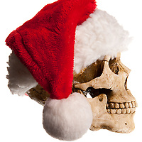 A profile view of a bone skull with jaw, wearing a red santa claus or elf hat with white ball on end.