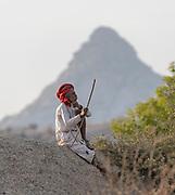 Shepherd from Jawai-area, Rajasthan, India.