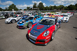 Dino Zamparelli | Bristol Sport Racing | #88 Porsche 911 GT3 Cup car | Porsche Carrera Cup GB - Photo mandatory by-line: Rogan Thomson/JMP - 07966 386802 - 06/06/2015 - SPORT - MOTORSPORT - Little Budworth, England - Oulton Park Circuit - BTCC Meeting Day 1.