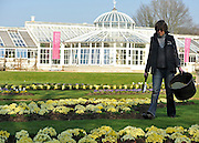 © Licensed to London News Pictures. 15/03/2012. Chiswick, UK. Volunteers tend to the ornamental gardens in the sunshine at Chiswick House today. The gardens at Chiswick are the birthplace of the English Landscape Movement and have inspired countless gardens including New York's Central Park..  Photo credit : Stephen SImpson/LNP