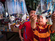 21 JANUARY 2017 - BANGKOK, THAILAND:  Boys look at Siamese fighting fish for sale at a stand in Phra Khanong Market in Bangkok. The market serves a mix of foreign residents, local people, and Burmese migrants.      PHOTO BY JACK KURTZ