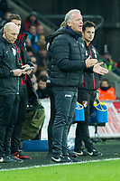 Football - 2016 / 2017 Premier League - Swansea City vs. AFC Bournemouth<br /> <br /> Swansea City caretaker manager Alan Curtis on the touchline after  bournemouth's 1st goal ---, at the Liberty Stadium.<br /> <br /> COLORSPORT/WINSTON BYNORTH