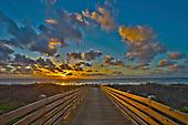 Sunflower Beach, Port Aransas TX
