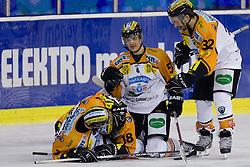 Team Moser Medical Graz99ers celebrates goal during ice-hockey match between HDD Tilia Olimpija and Moser Medical Graz99ers in 10th Round of EBEL league, on October 10, 2010 at Hala Tivoli, Ljubljana, Slovenia. (Photo By Matic Klansek Velej / Sportida.com)