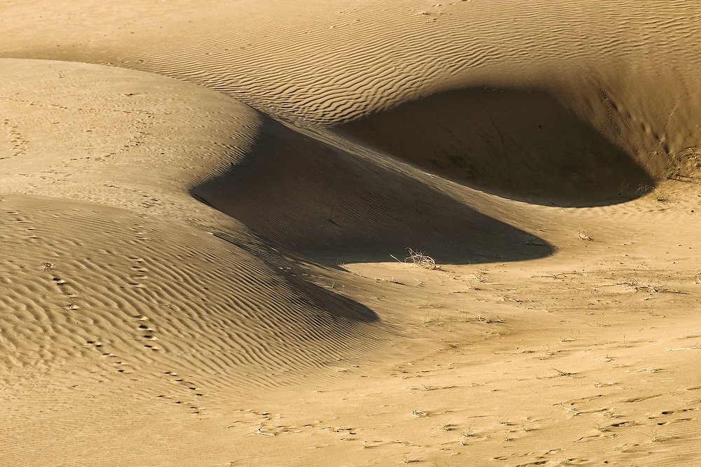 Khuri Desert in Jaisalmer of Rajasthan, India