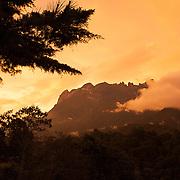 Kinabalu Summit Trail, Kinabalu National Park, Borneo, Malaysia.
