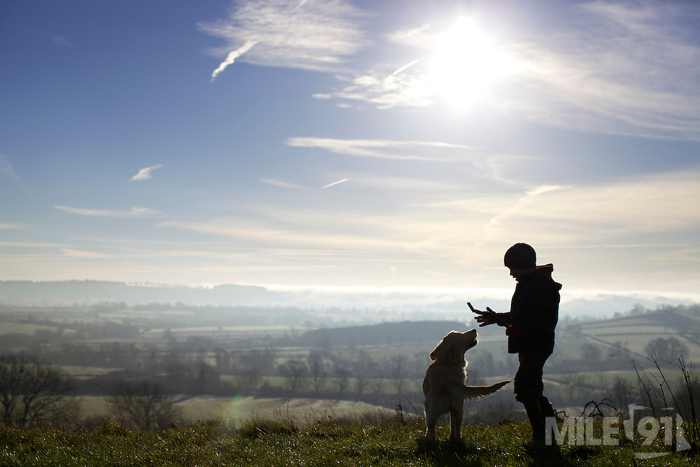 A young boy playing with his six month old golden retriever puppy on top of a hill. They are back lit by the morning sun.