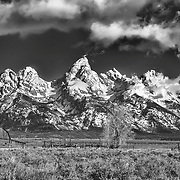 The famous John Moulton Barn in the foreground of the majestic Teton Range.