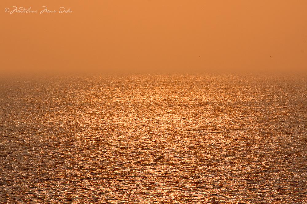 Golden Seascape Atlantic Horizon / wt022
