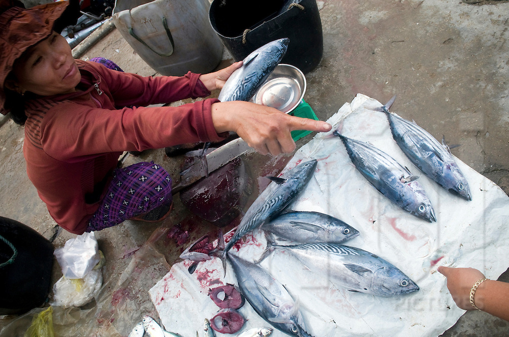 Seafood at Doc Let market in Khanh Hoa province, Vietnam, Asia. Vietnamese women sell fish