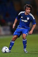 Cardiff City's Fabio Da Silva