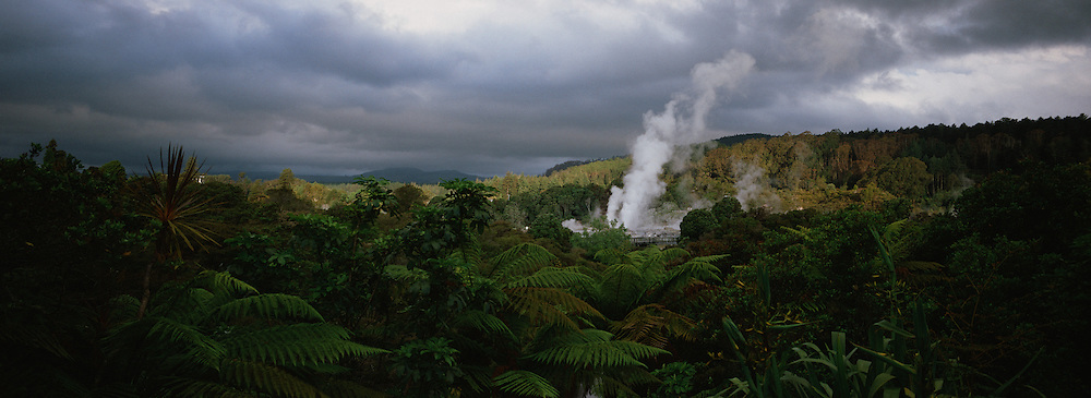 A spectacular geyser at Te Puia, Rotorua. Te Puia is the premier Maori cultural centre in New Zealand - a place of gushing waters, steaming vents, boiling mud pools and spectacular geysers. Te Puia also hosts National Carving and Weaving Schools and  daily maori culture performances including dancing and singing. Rotorua Photo Tim Clayton