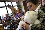 PARO (Seal-like healing Robot) interacting with pentioners  at the &ldquo;Toyoura&rdquo; nursing home. Old women seam to feel more affection towards the cute robot when men keep some distance and think of it as something strange. PARO has already sold 500 pieces in Japan from which 80% went to individual people and the rest to nursing homes.  In 2002 it won its place at the &ldquo;Guinness Book of Records&rdquo; as &ldquo;The Most Therapeutic Robot&rdquo;.<br /> http://www.paro.jp/english/index.html - TOKYO  20/4/2005
