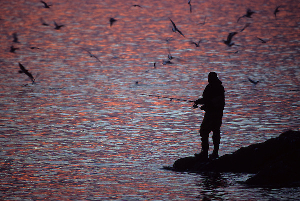 Stock photo of the silhouette of a man fishing from the shore at sunset