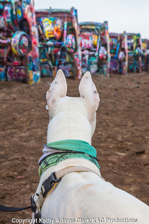 """On Interstate 40 west of Amarillo, there is a public art installation called """"Cadillac Ranch."""" An art group called Ant Farm, consisting of  Chip Lord, Hudson Marquez and Doug Michels created the installation in 1974."""