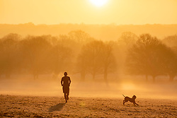 © Licensed to London News Pictures. 07/02/2020. London, UK. Calm before the storm. A runner enjoys the sun as it rises through the frost and mist in Richmond Park this morning as weather experts predict stormy weather with high winds and heavy rain for the weekend. Photo credit: Alex Lentati/LNP