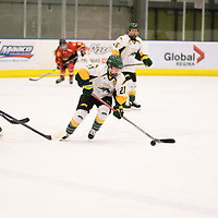 5th year forward Kylee Kupper (21) of the Regina Cougars in action during the Women's Hockey home game on November 17 at Co-operators arena. Credit: Arthur Ward/Arthur Images