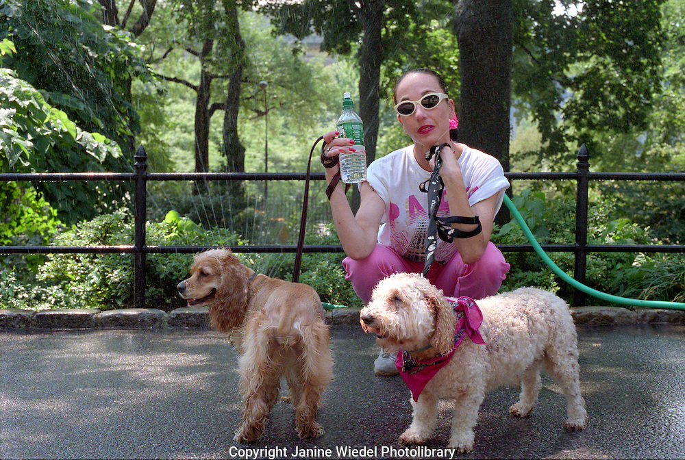 Woman with sprinkler behind her cooling off while walking her spanniels in Central Park New York City.