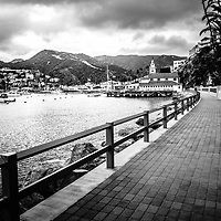 Catalina Island Avalon Bay Casino Way walkway black and white photo. Picture includes Catalina Island Yacht Club and Avalon city waterfront businesses. Catalina Island is a popular travel destination off the coast of Southern California in the United States.