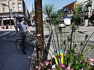 A man pauses on his bicycle at an intersection in Leamington, Ontario. The uptown area is popular with migrant workers for shopping and banking.