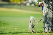 Rory McIlroy (NIR) during the Final Round of the The Arnold Palmer Invitational Championship 2017, Bay Hill, Orlando,  Florida, USA. 19/03/2017.<br /> Picture: PLPA/ Mark Davison<br /> <br /> <br /> All photo usage must carry mandatory copyright credit (&copy; PLPA   Mark Davison)