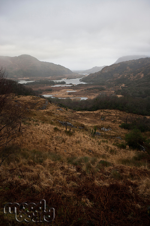 View down to Lough Leane, Killarney National Park, Ireland