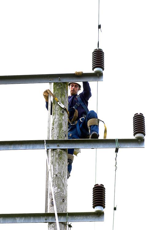 Overhead Linesmen working on electricity power lines, Nottinghamshire, England, UK.