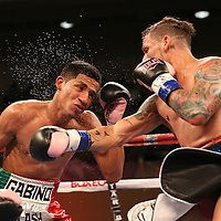 "Orlando ""El Fenomeno""  Cruz (R) punches Gabino ""Flash"" Cota during their Boxeo Telemundo WBO/NABO Super Featherweight bout on Friday, October 9, 2015 at the Kissimmee Civic Center in Kissimmee, Florida. Cruz, who is from Puerto Rico, is the first ever openly gay boxer  in the history of the sport and won the bout by unanimous decision.  (Alex Menendez via AP)"