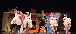 "© Licensed to London News Pictures. 05/08/2015. London, UK. L-R: Taofique Folarin, Daniel Buckley, Simon Webbe, Alison Jiear and Leanne Jones. West End premiere of the children's story ""The 3 Little Pigs"" at the Palace Theatre starring Simon Webbe as Wolf, Alison Jiear as Mother, Leanne Jones as Bee, Taofique Folarin as Bar and Daniel Buckley as Q. The show runs from 5 August to 6 September 2015. Photo credit: Bettina Strenske/LNP"