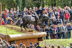 SAINTEMARIE Fabrice (FRA), CESAR DE ROY<br /> Le Lion d'Angers - FEI Eventing World Breeding Championship 2019<br /> Teilprüfung Cross-Country 7 jährige<br /> 19. Oktober 2019<br /> © www.sportfotos-lafrentz.de/Stefan Lafrentz