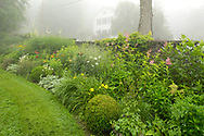 A summer border along a stone wall in Richard Ballinger's garden in Rensselaerville, New York State, U.S.A.