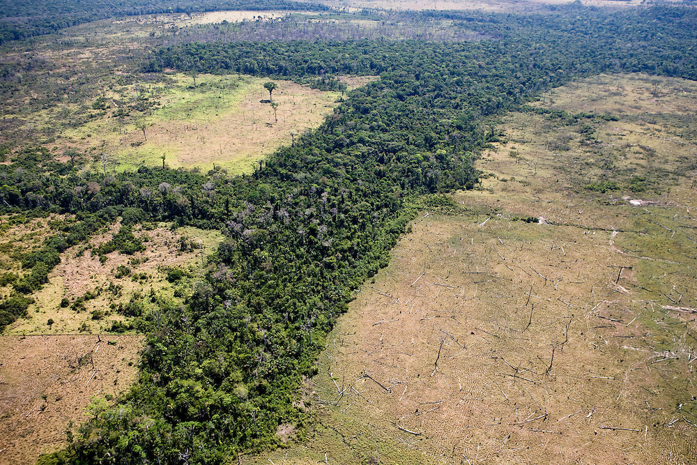 Rainforest has been cleared from the land near lanFazenda Sao Joaquim, Aug. 6, 2008..Daniel Beltra/Greenpeace