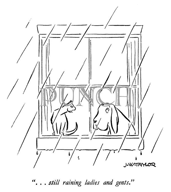 """...still raining ladies and gents."""
