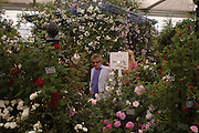 Rod Stewart. Royal Horticultural Society's Chelsea Flower Show, Royal Hospital's grounds. Chelsea. 23 May 2005.  ONE TIME USE ONLY - DO NOT ARCHIVE  © Copyright Photograph by Dafydd Jones 66 Stockwell Park Rd. London SW9 0DA Tel 020 7733 0108 www.dafjones.com
