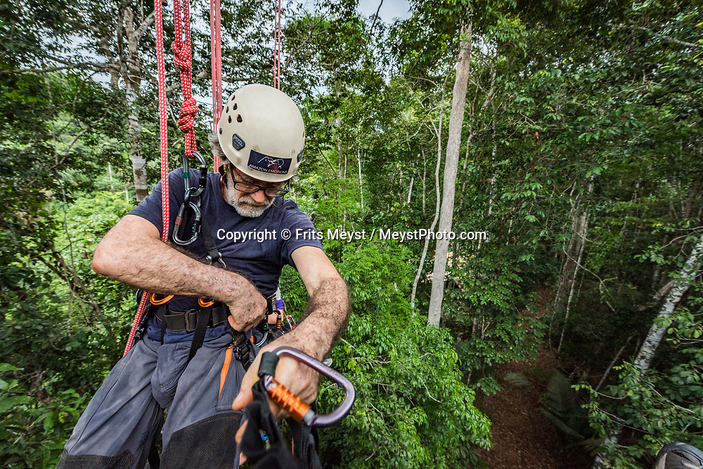 Manaus, Amazonia, Brazil, November 2018.  Climbing into a 50 meter tall tree with photographer Leo Principe. The largest bio diversity of the rainforest is found in the canopy. Exploring the Amazone Rainforest with Leo and Vanessa of Amazon Emotions. The Amazone river and Rio Negro connect the small rain forest communities that dot the region. River Amazon (Portuguese: Rio Amazonas; Spanish: Río Amazonas) of South America is the largest river in the world by volume, with total river flow greater than all the other top ten largest rivers flowing into the ocean combined. The Amazon drains an area of some 6,915,000 square kilometres (2,670,000 sq mi), or some 40 percent of South America. Photo by Frits Meyst / MeystPhoto.com