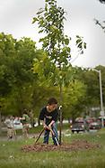 bluewatertreeplanting