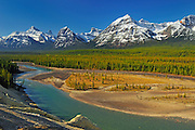 Athabasca River and the Canadian Rocky Mountains. From Athabasca Viewpoint<br /> Jasper National Park<br /> Alberta<br /> Canada