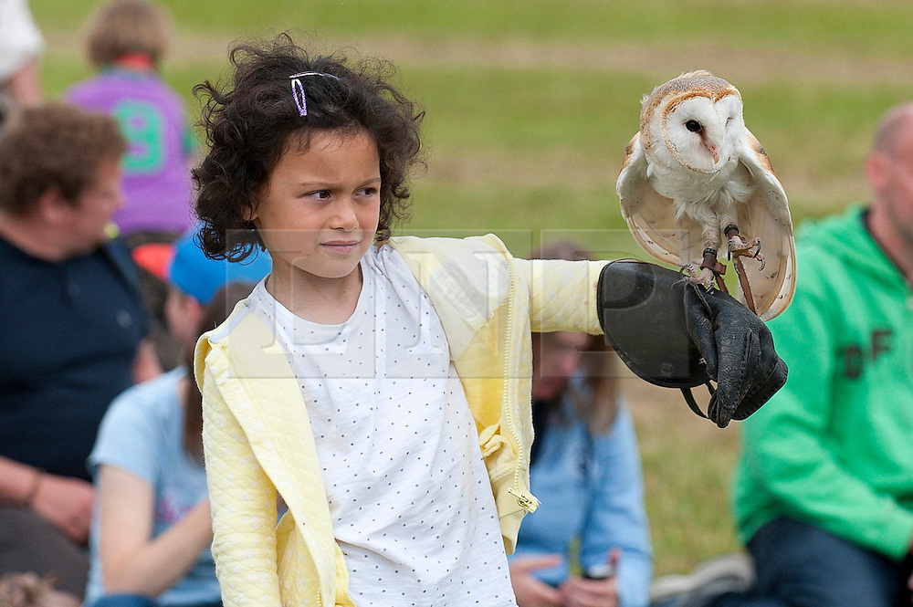 © Licensed to London News Pictures. 23/07/2015. Llanelwedd, Powys, UK. A young girl takes part in the Falconry Display put on by Ray & Wendy Aliker. Royal Welsh Agricultural Show is hailed as the largest & most prestigious event of it's kind in Europe. In excess of 200,000 visitors are expected this week over the four day show period - 2014 saw 237,694 visitors, 1,033 tradestands & a record 7,959 livestock exhibitors. The first ever show was at Aberystwyth in 1904 and attracted 442 livestock entries. Photo credit: Graham M. Lawrence/LNP