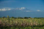 Kilimanjaro viewed from the Moshi to Arusha road in Tanzania