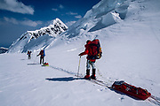 Skiers descend Muldrow glacier after travsersing Denali on skis from Kahiltna glacier, Alaska